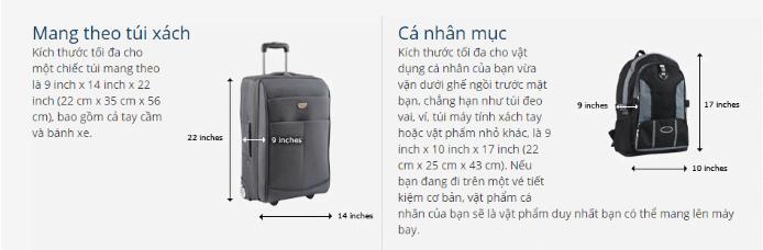 """<span style=""""font-family: arial, helvetica, sans-serif; font-size: 16px;""""><em>Quy định hành lý xách tay khi mua vé máy bay United Airlines đi Minneapolis</em></span>"""